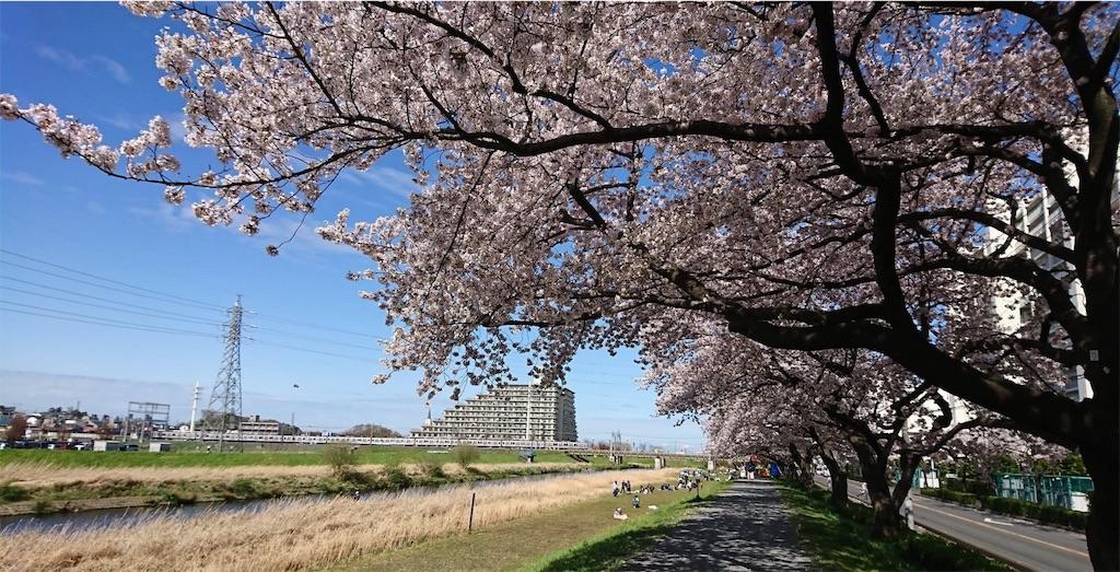 f:id:blog-japan:20180320151809j:image