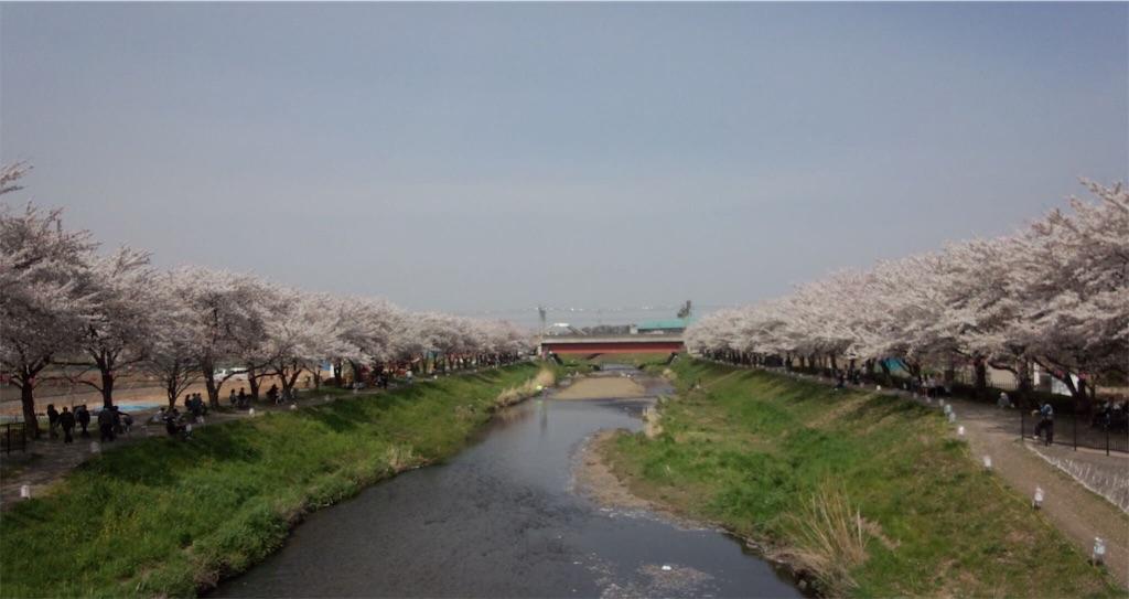f:id:blog-japan:20180320152111j:image