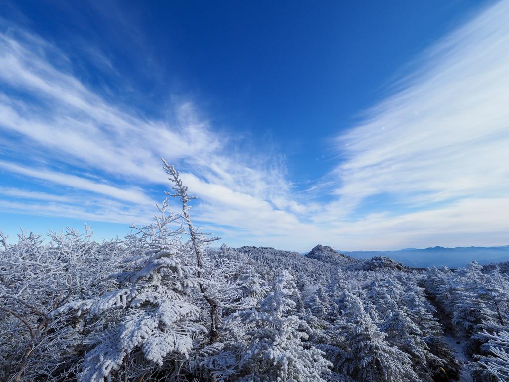 好天に恵まれ、美しい樹氷や雪山を眺めながらのトレッキングとなりました。