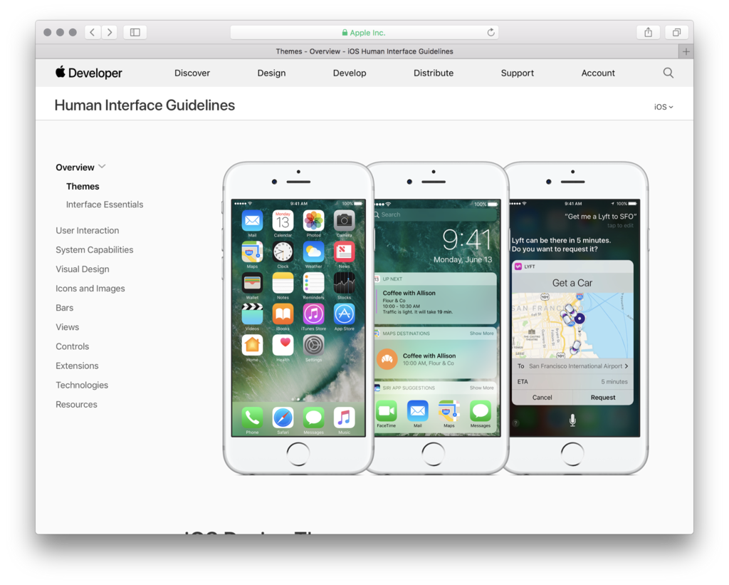 Apple: Human Interface Guidelines