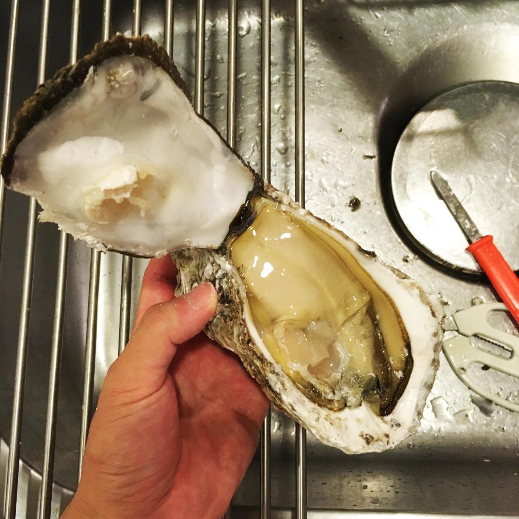 夏は岩牡蠣を食べよう
