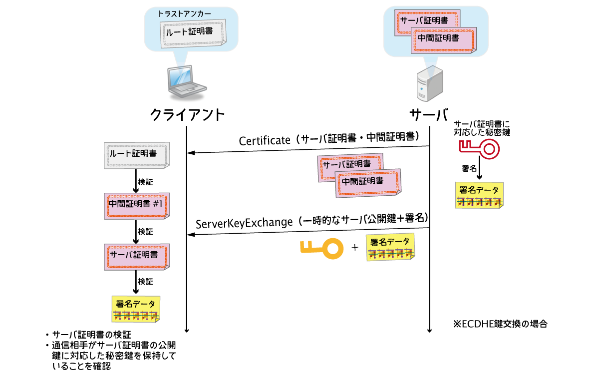 TLS Server Authentication