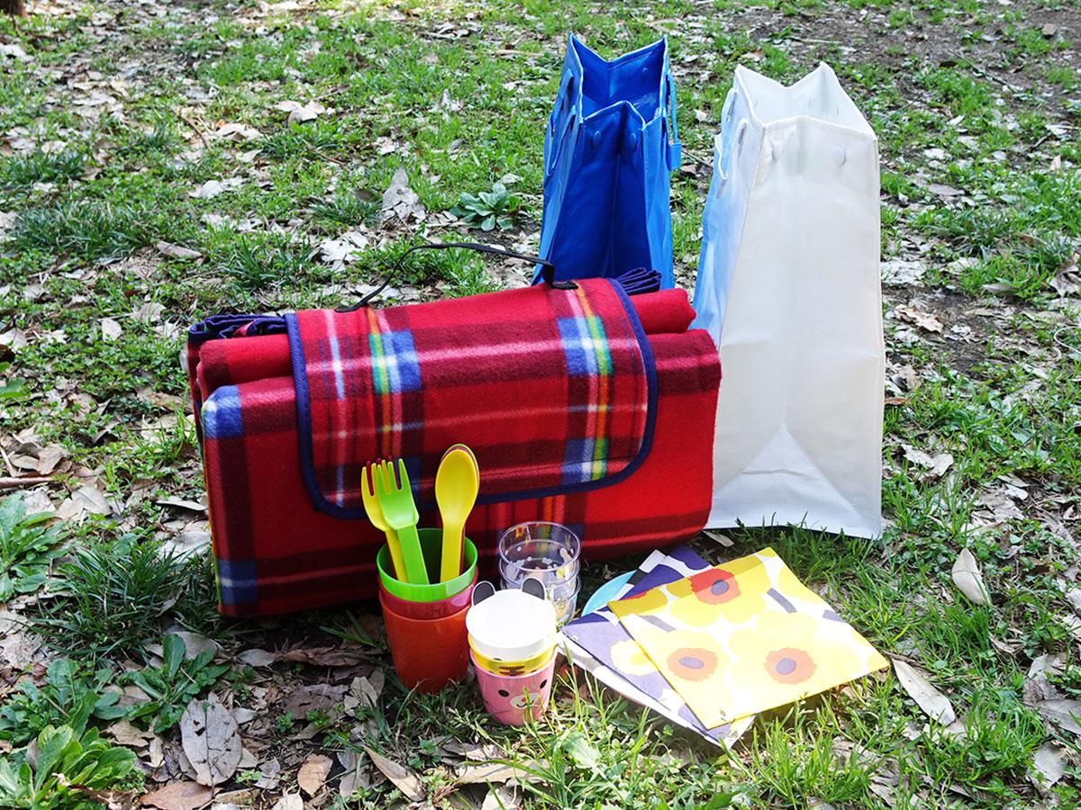 春はピクニックや花見の季節です。