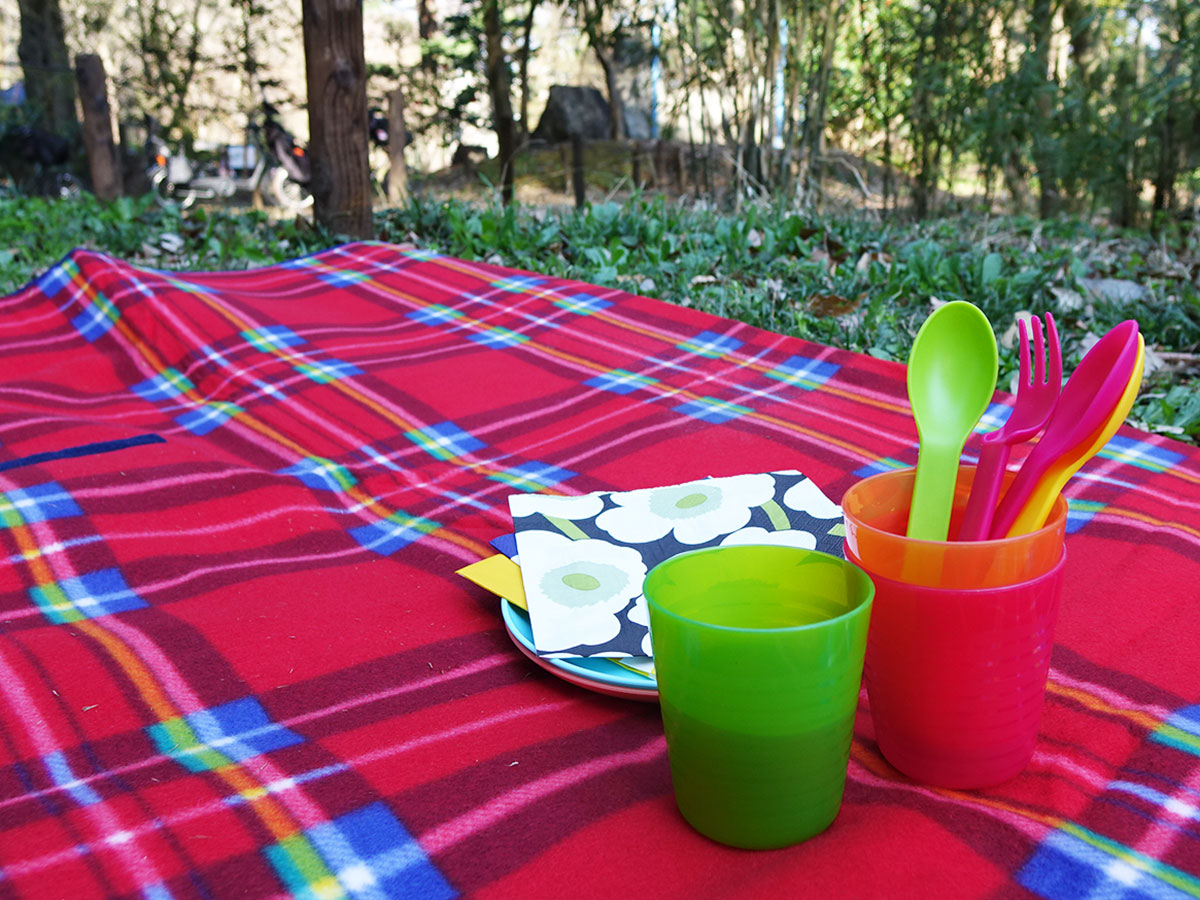 IKEAのプラコップとお皿とフォーク