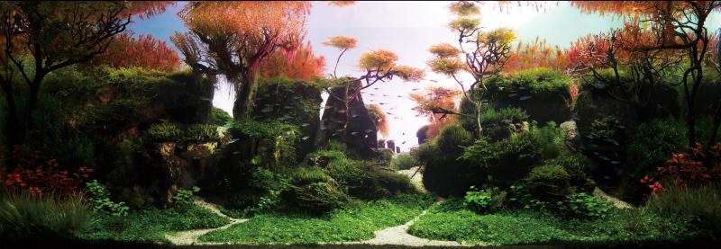 世界水草レイアウトコンテスト2013出品作品 制作者:タナカカツキ