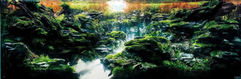 世界水草レイアウトコンテスト2016出品作品 制作者:タナカカツキ
