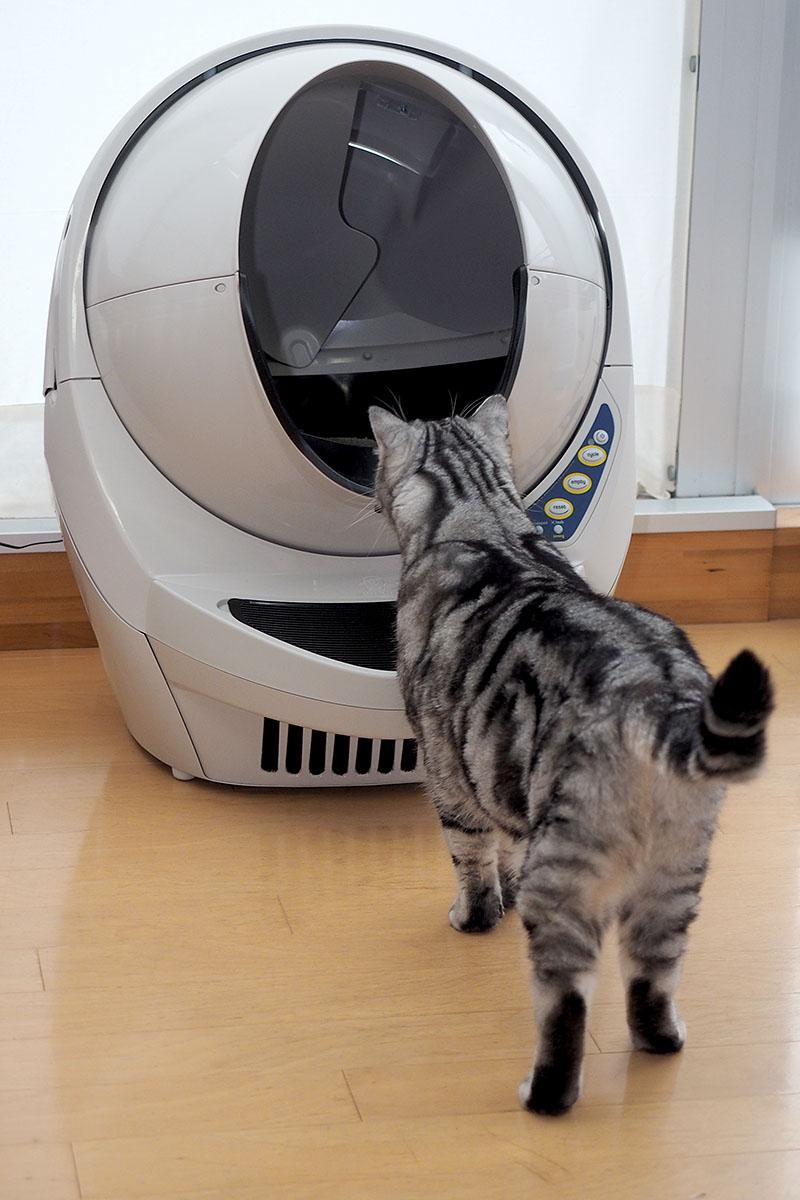 OFTの「キャットロボット Open Air」。この中で猫が排泄すると、排泄物を自動的に片付けてくれるという機械です。