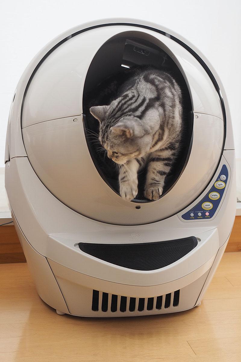 猫がトイレを済ませて出て行くと、上部の丸い部分が回転し始めて、排泄物を片付けてくれます。