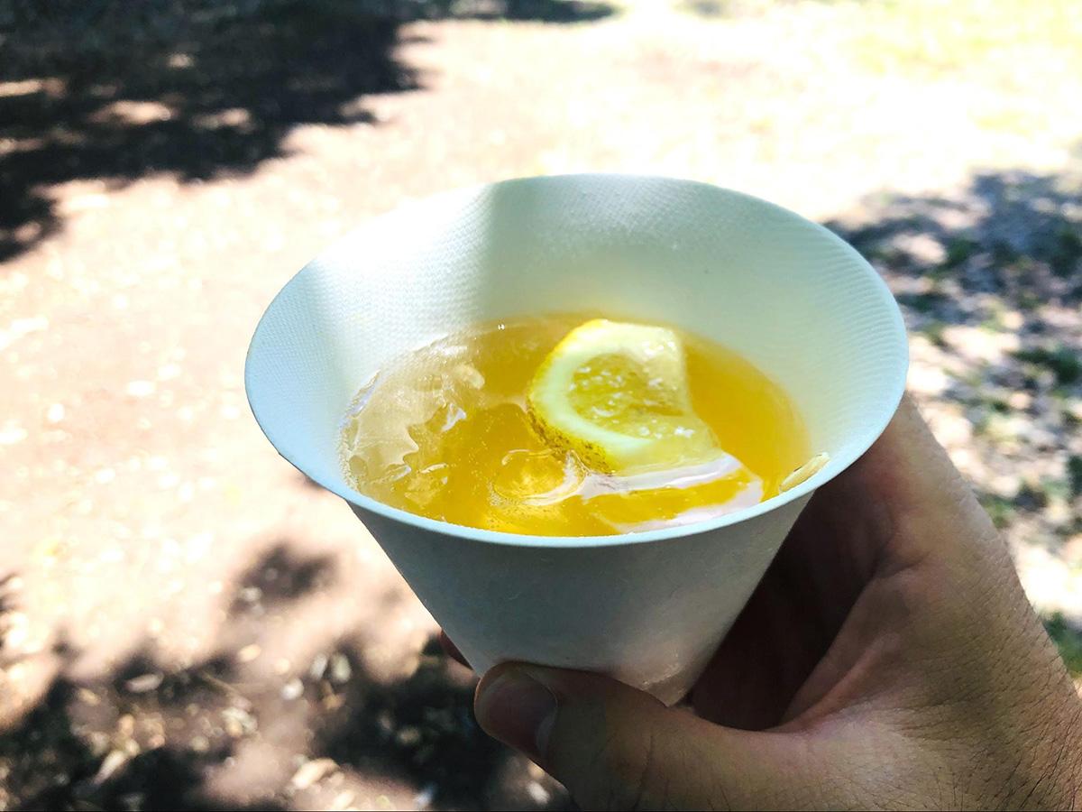 和食器「WASARA」 氷をたくさん入れても耐水性がいい