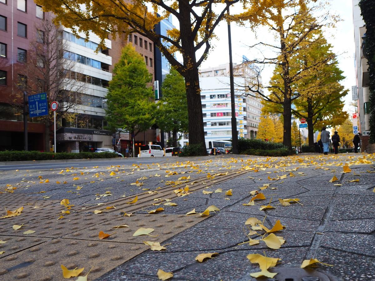橋本市ばくさい