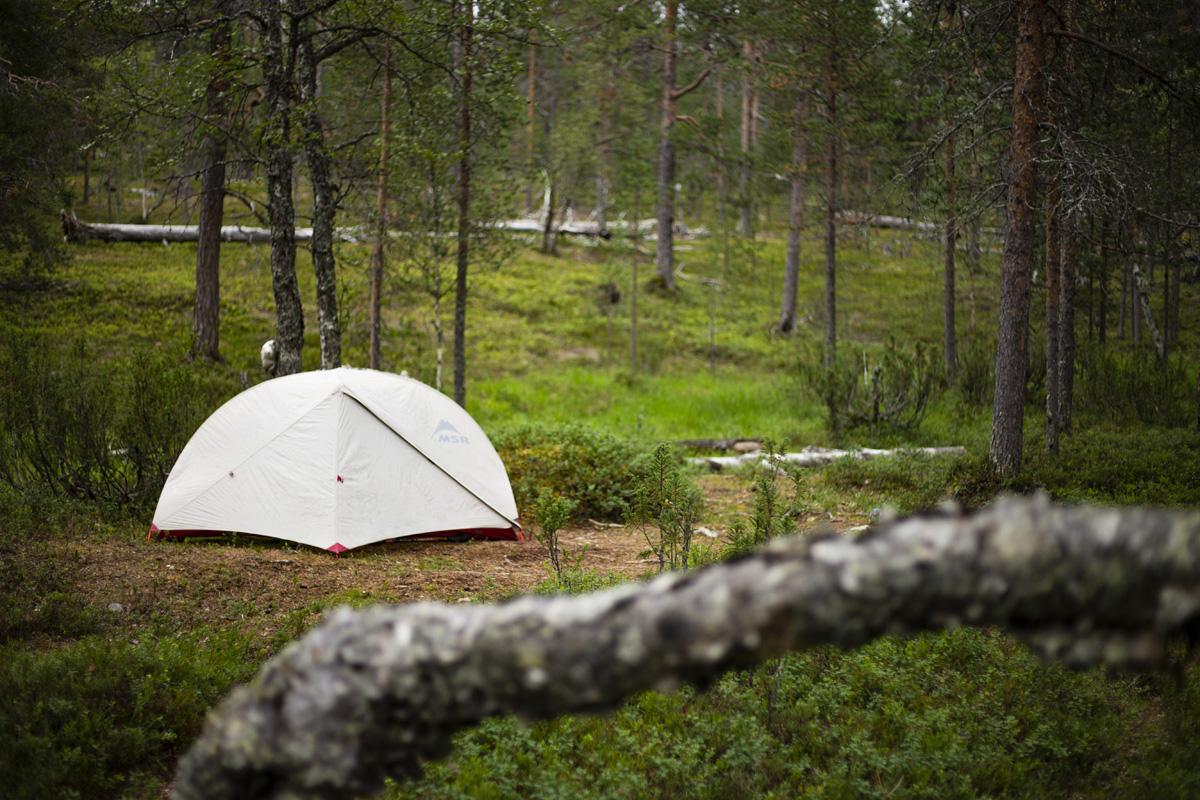 キャンプのマストアイテム・テントの解説