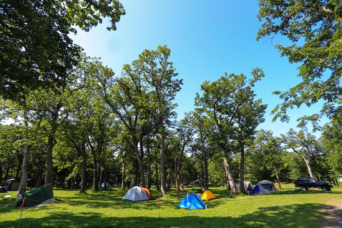 ソロキャンプにおすすめのキャンプ場