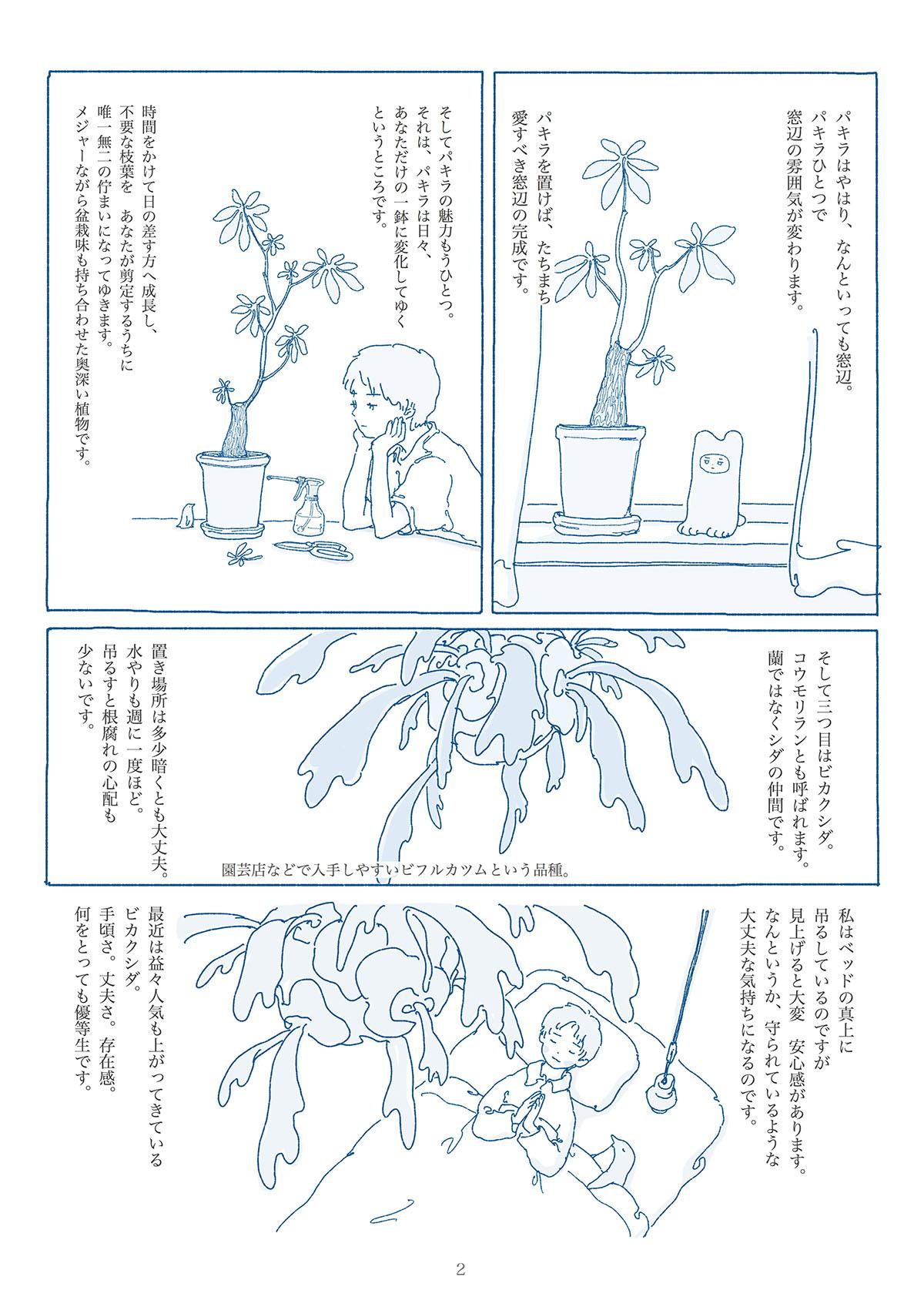 お気に入りの観葉植物の漫画2ページ目