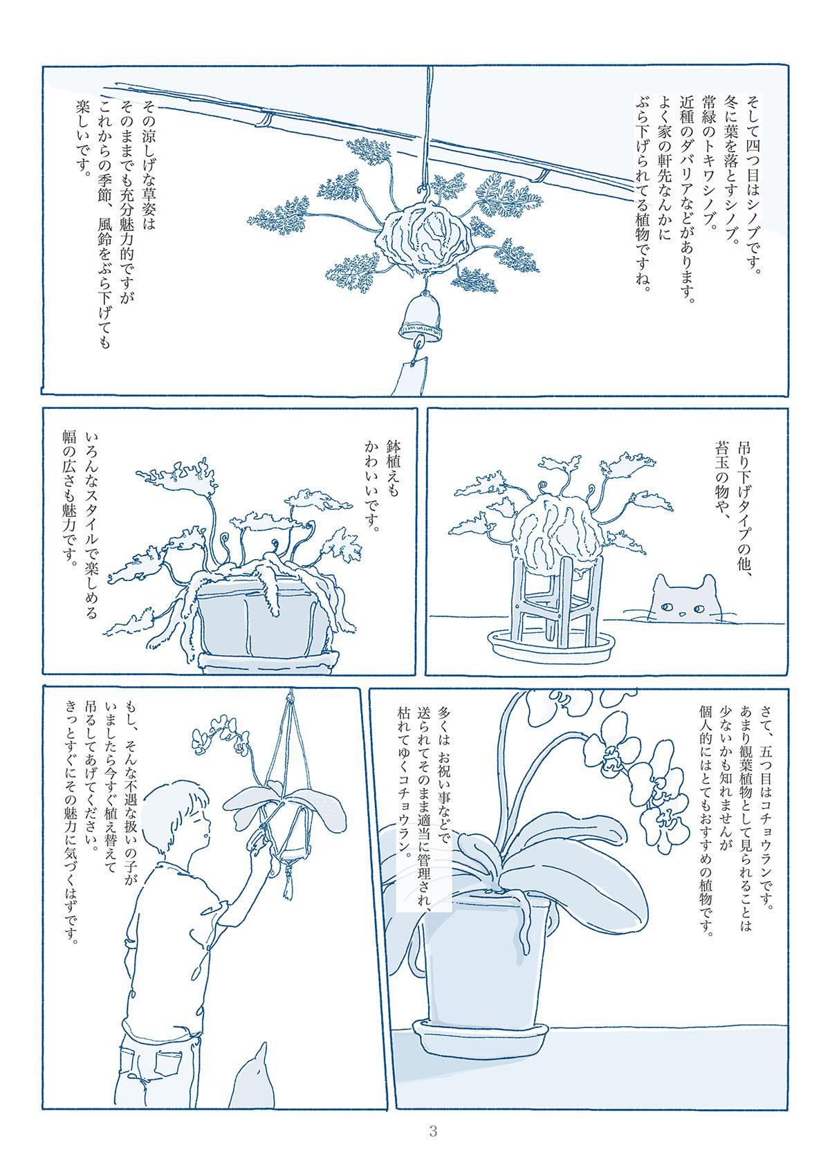 お気に入りの観葉植物の漫画3ページ目