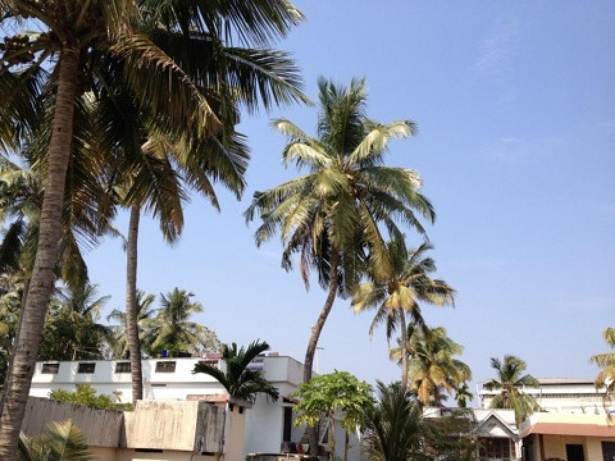 著者が訪れた南インドの風景
