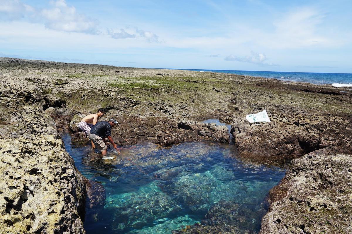 喜界島の風景写真