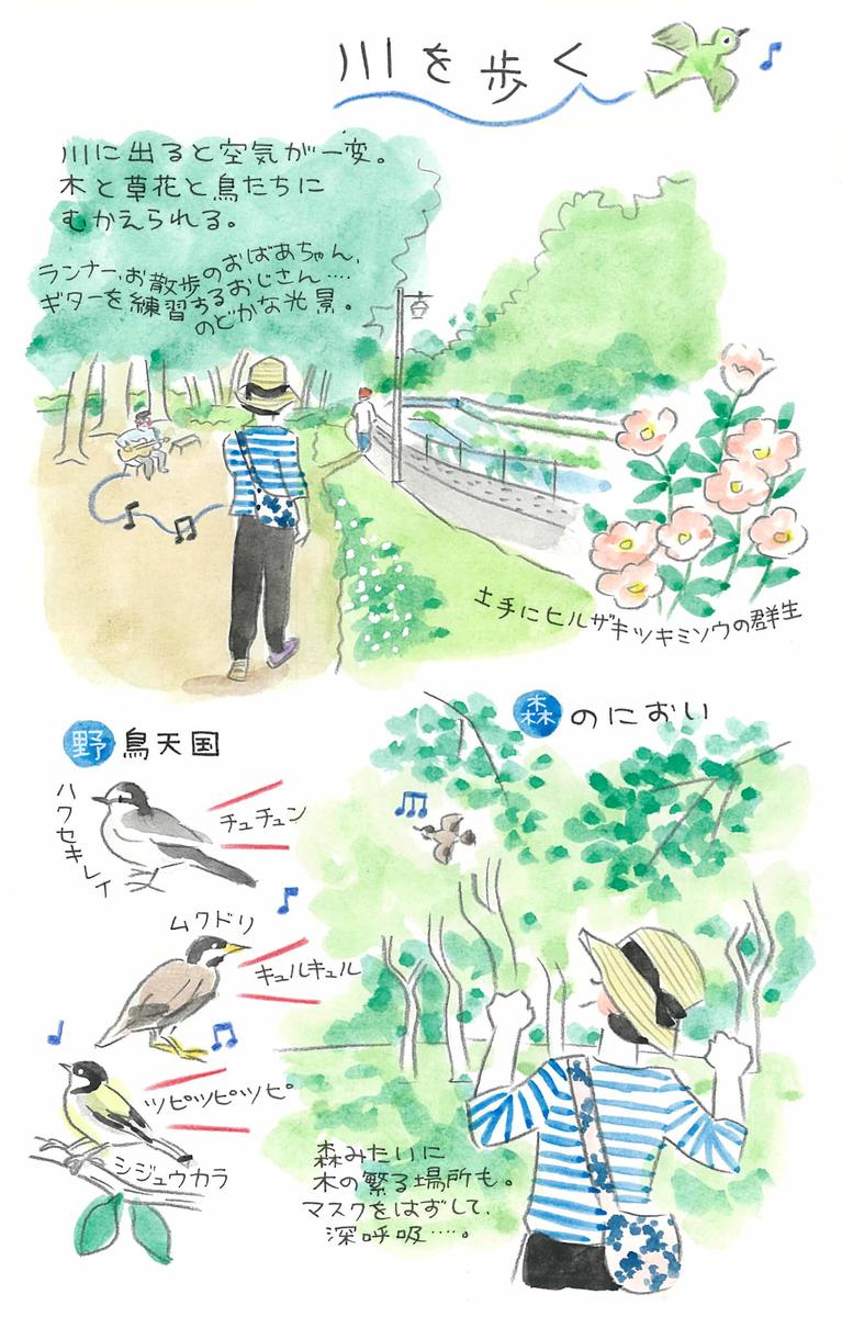 杉浦さんなりの散歩の楽しみ方。川付近を歩き自然の匂いを楽しむことも