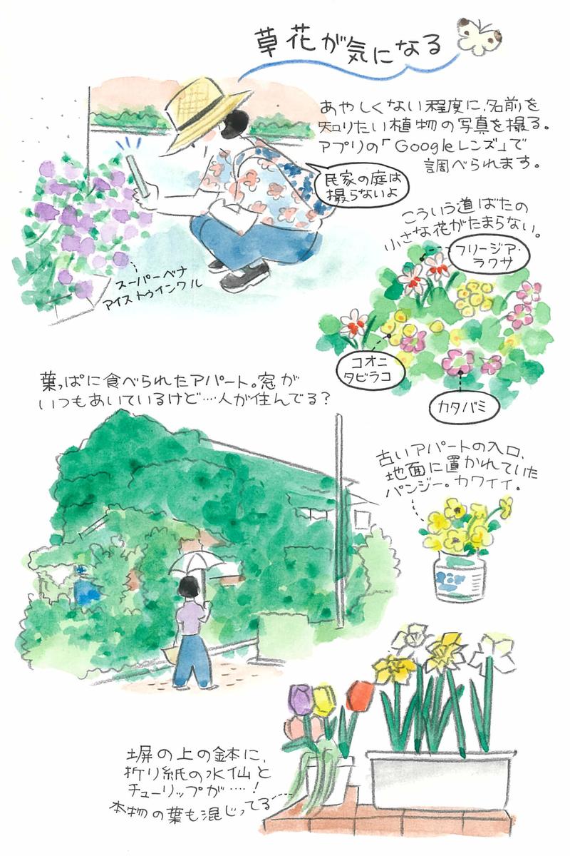 無理せず散歩を続ける方法は人それぞれ。杉浦さんなりの散歩の楽しみ方は、花とおうちウォッチングをすること