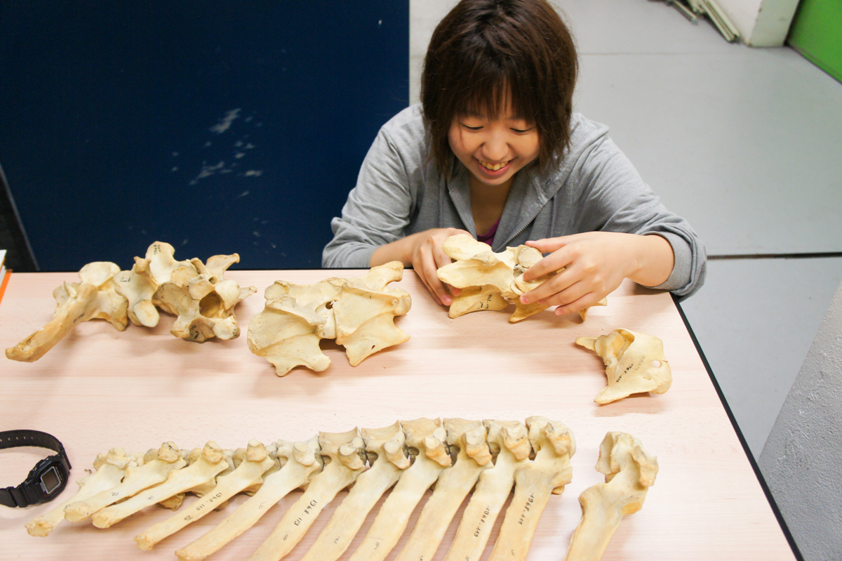 郡司芽久さん記事トップ写真