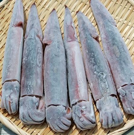 「小木 船凍イカ」を詳しく見る