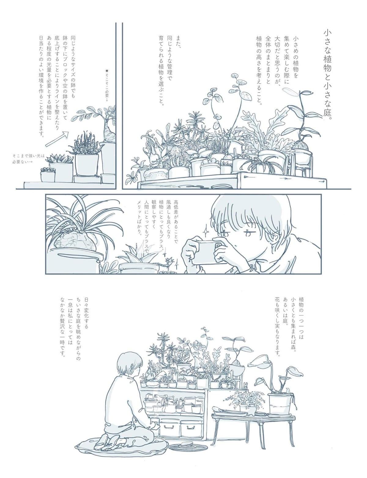 小さな植物と小さな庭。