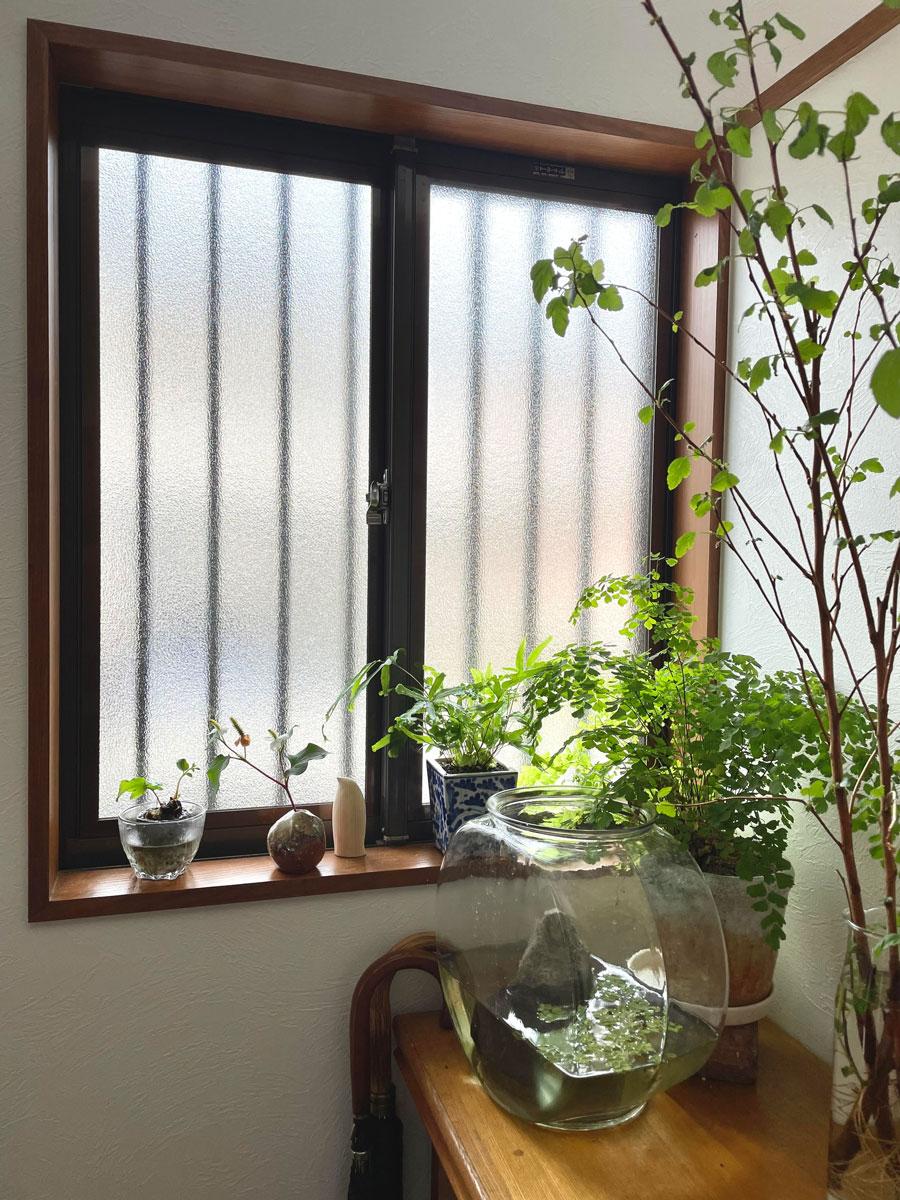 日当たりの良くない方角の窓