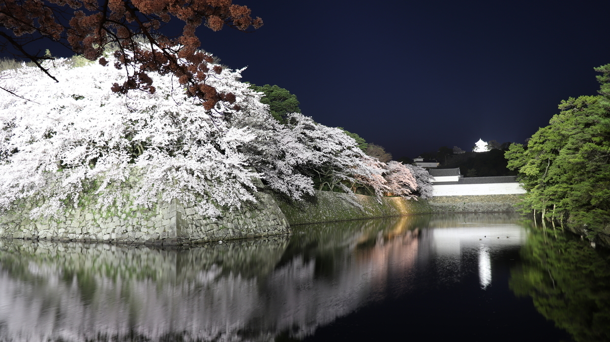 f:id:blog-office-teramura:20190411221226j:plain