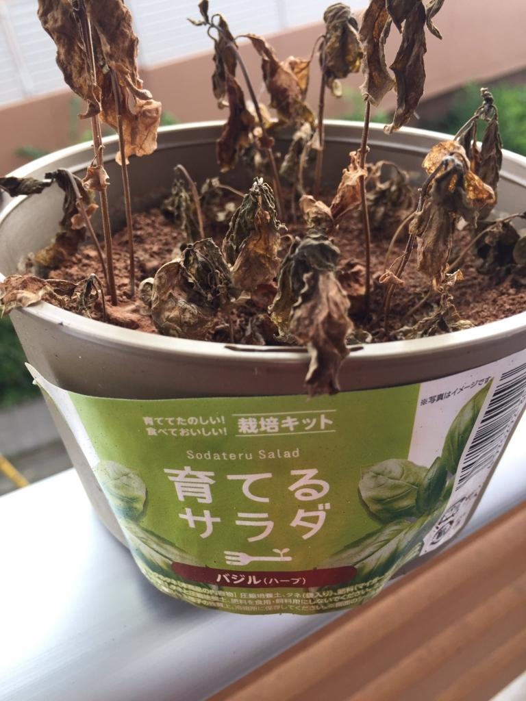 f:id:blogmaresuke:20170806183659j:plain