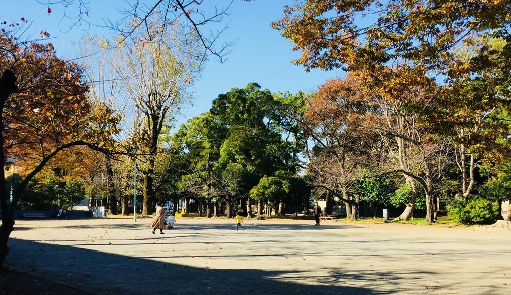 f:id:blogmotosumiyoshi:20181125171434j:plain