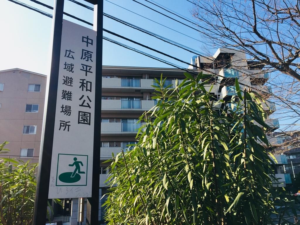 f:id:blogmotosumiyoshi:20190126004847j:plain