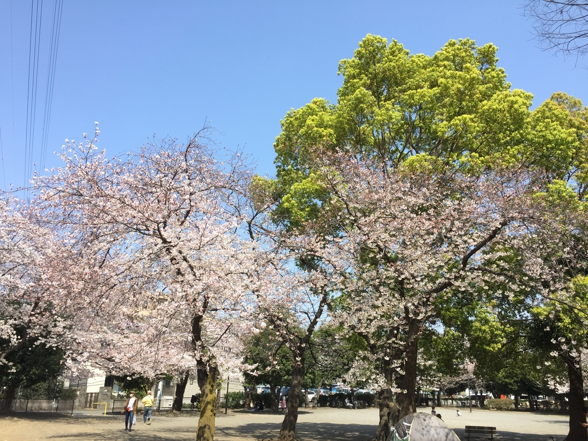 f:id:blogmotosumiyoshi:20190406155355j:plain