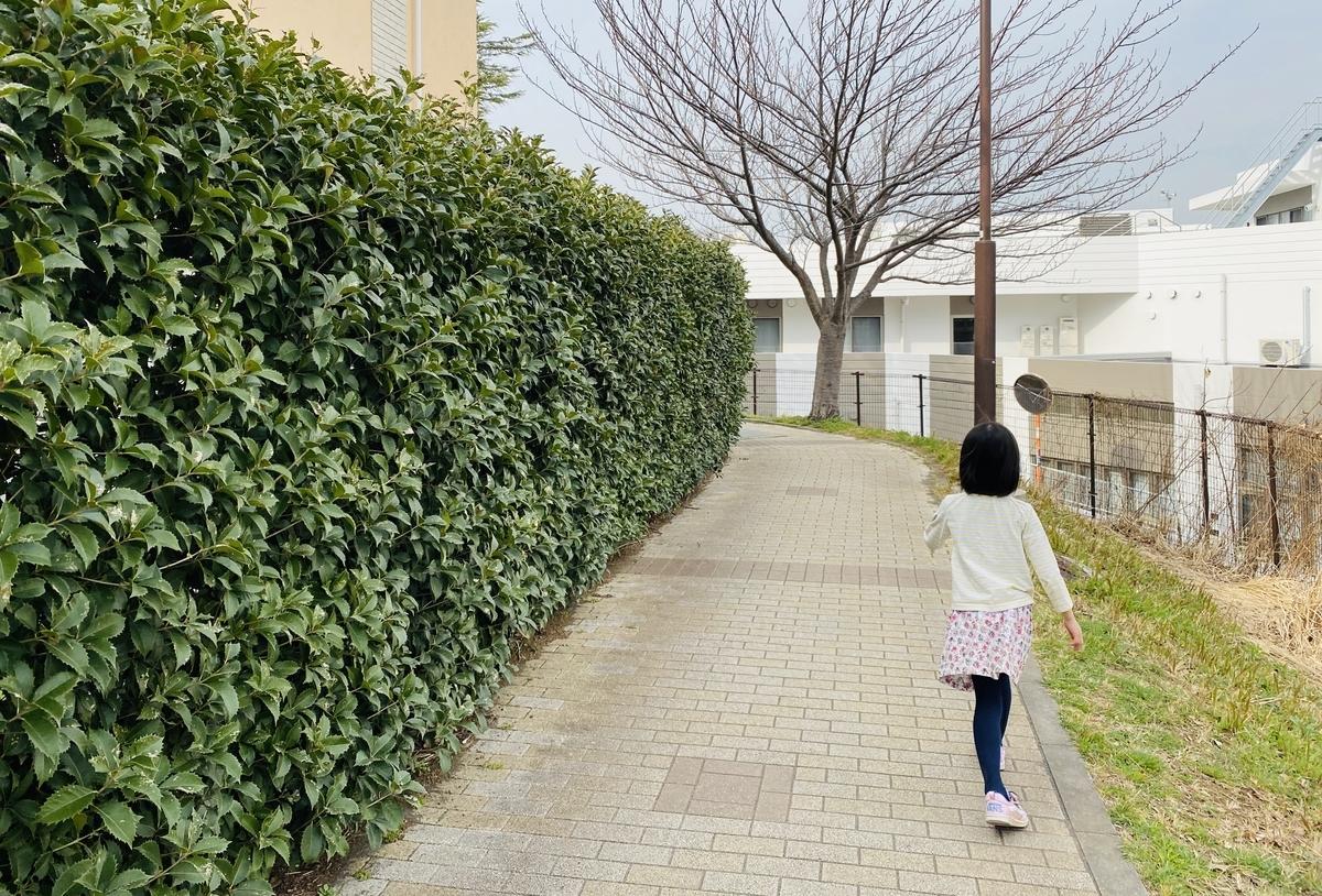 f:id:blogmotosumiyoshi:20200229145648j:plain