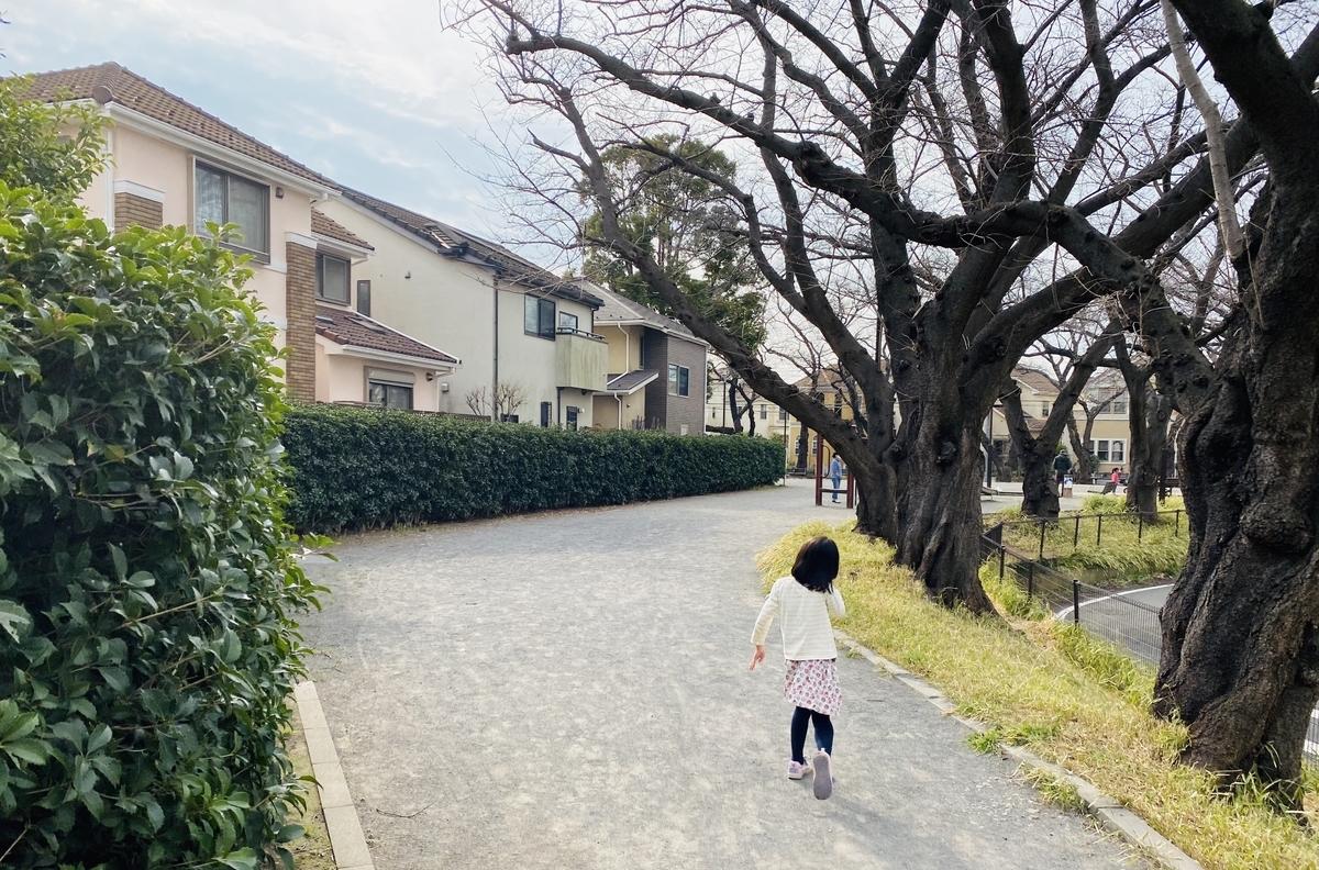 f:id:blogmotosumiyoshi:20200229145740j:plain