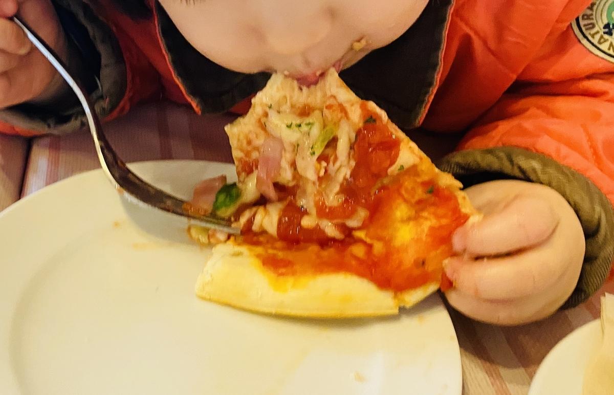 f:id:blogmotosumiyoshi:20200315115559j:plain