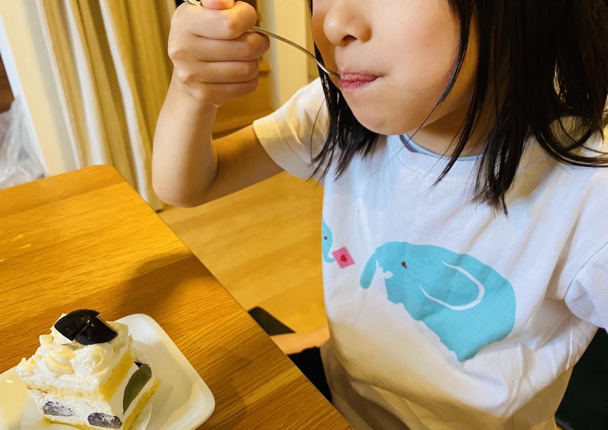 f:id:blogmotosumiyoshi:20201004181831j:plain