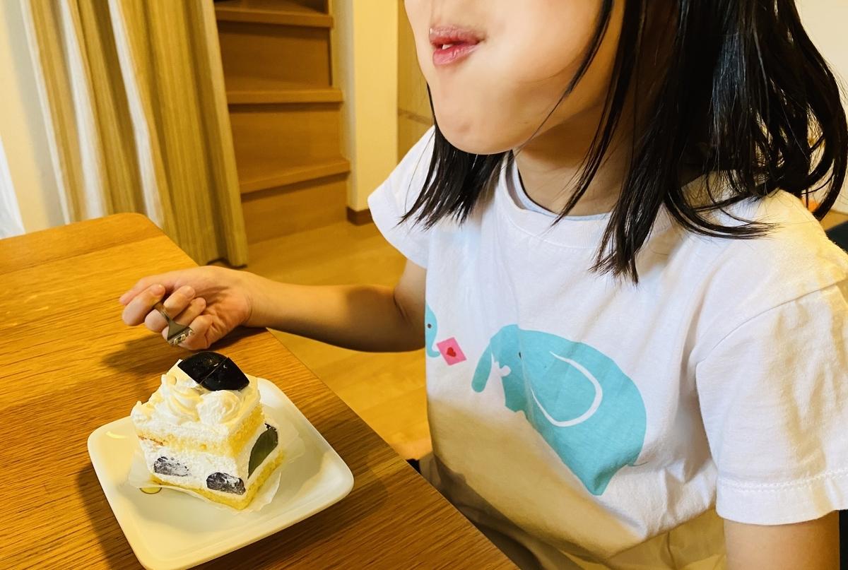 f:id:blogmotosumiyoshi:20201004181841j:plain