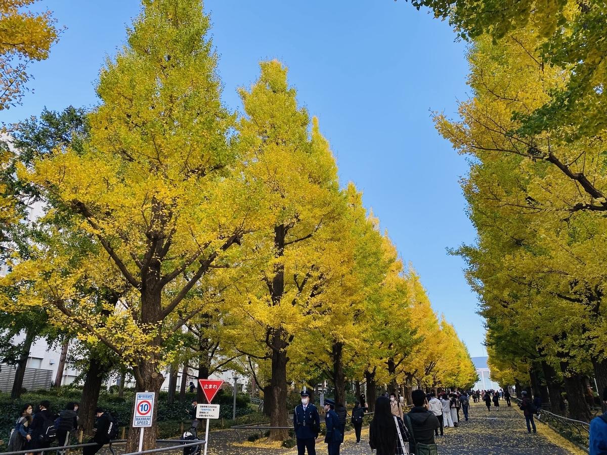 f:id:blogmotosumiyoshi:20201123065432j:plain