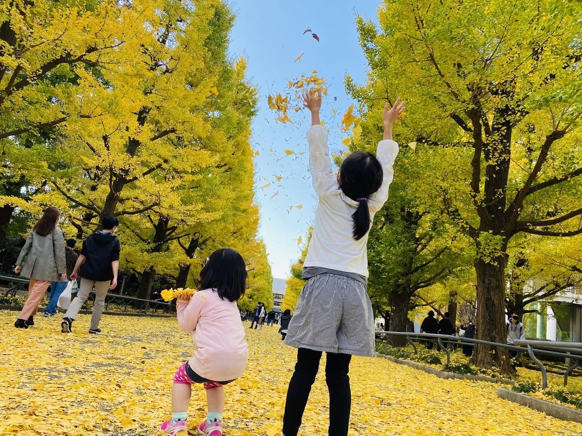 f:id:blogmotosumiyoshi:20201123065549j:plain