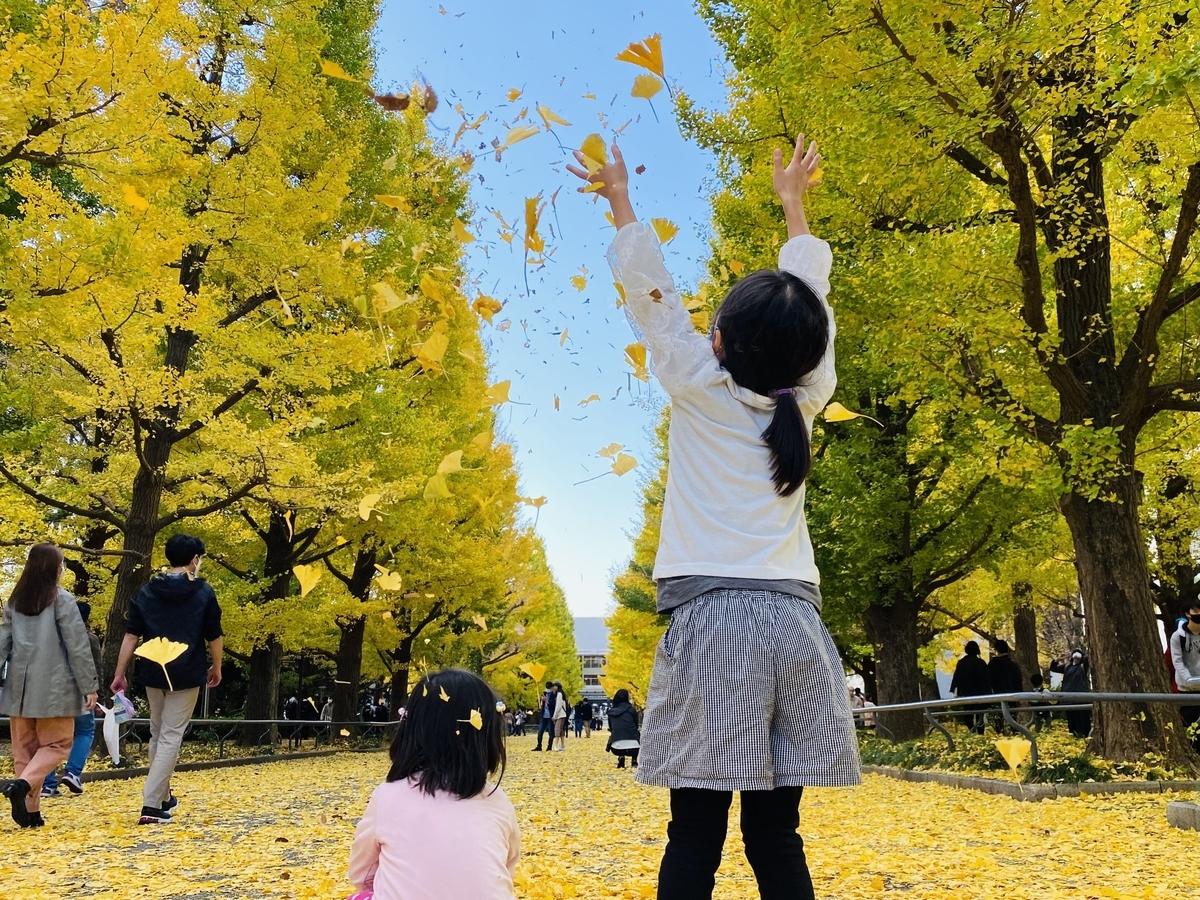 f:id:blogmotosumiyoshi:20201123065558j:plain