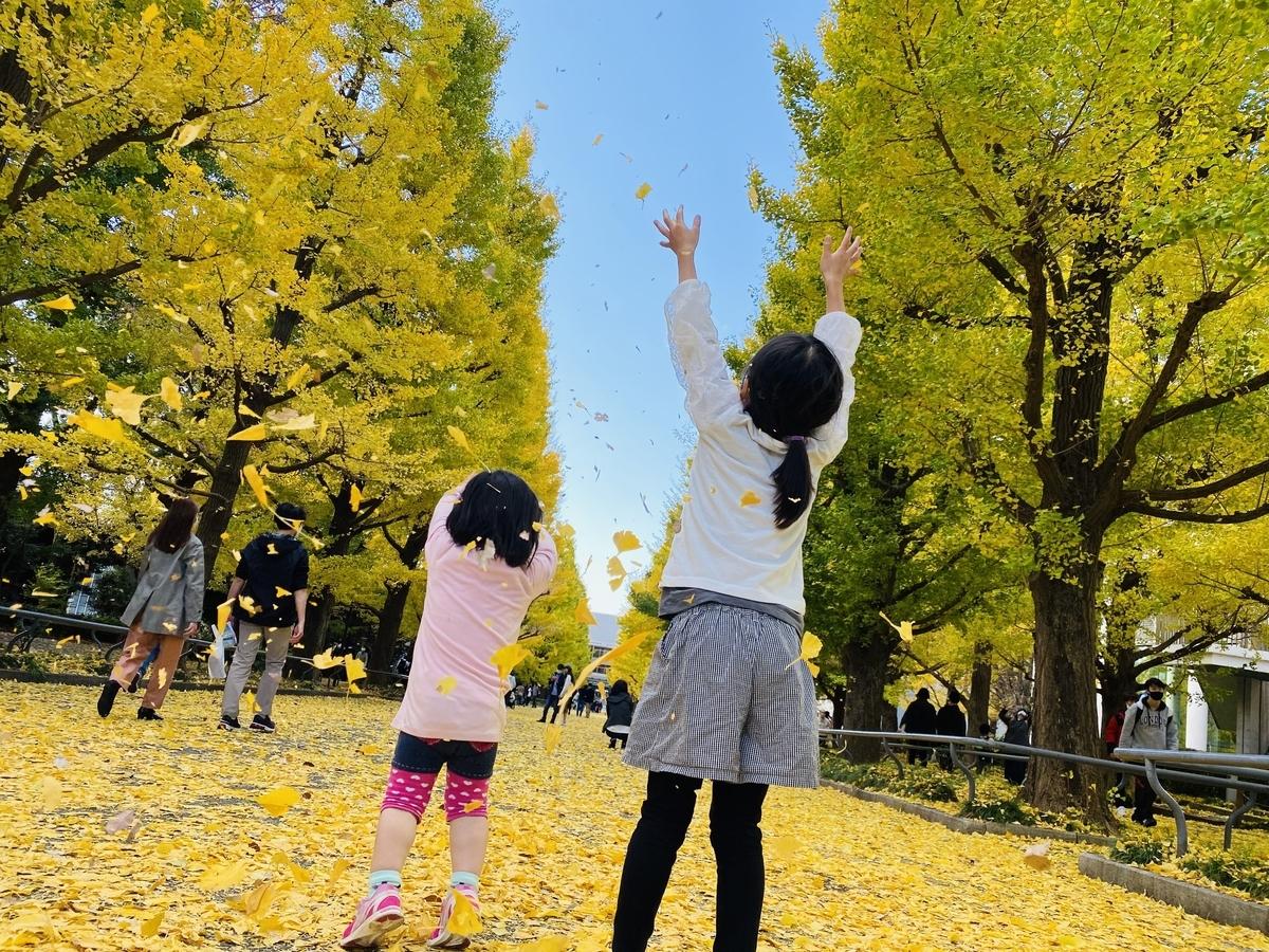 f:id:blogmotosumiyoshi:20201123065606j:plain