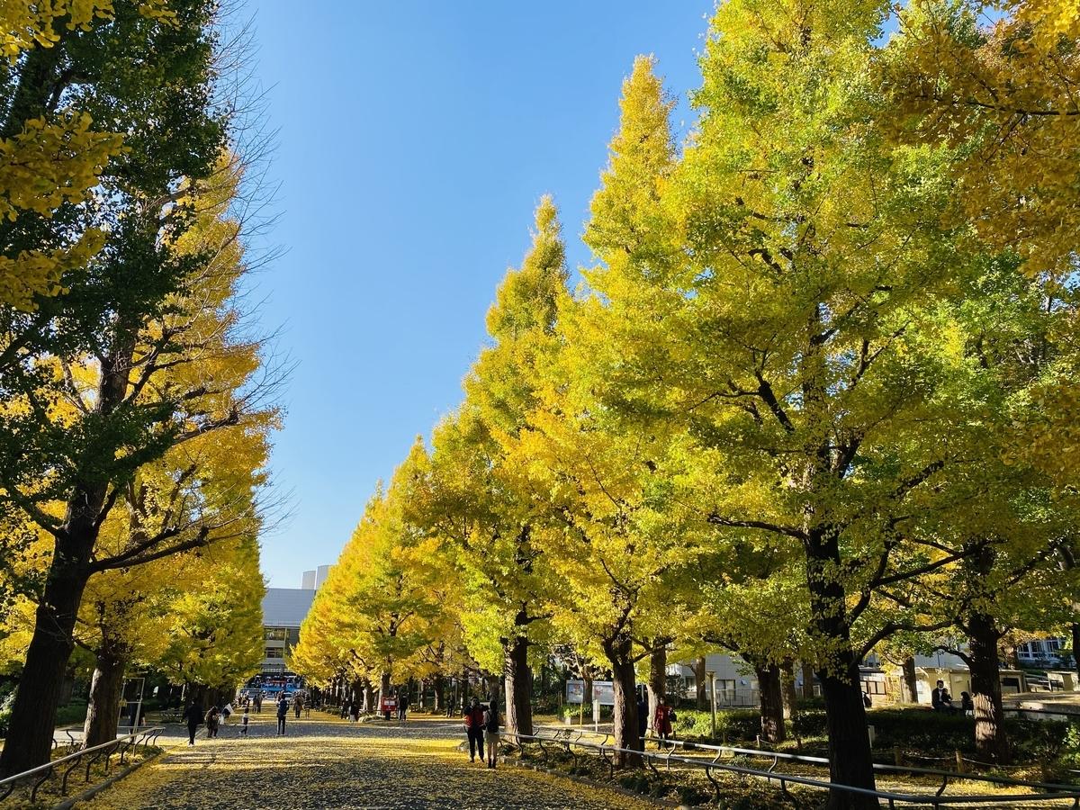 f:id:blogmotosumiyoshi:20201123065615j:plain