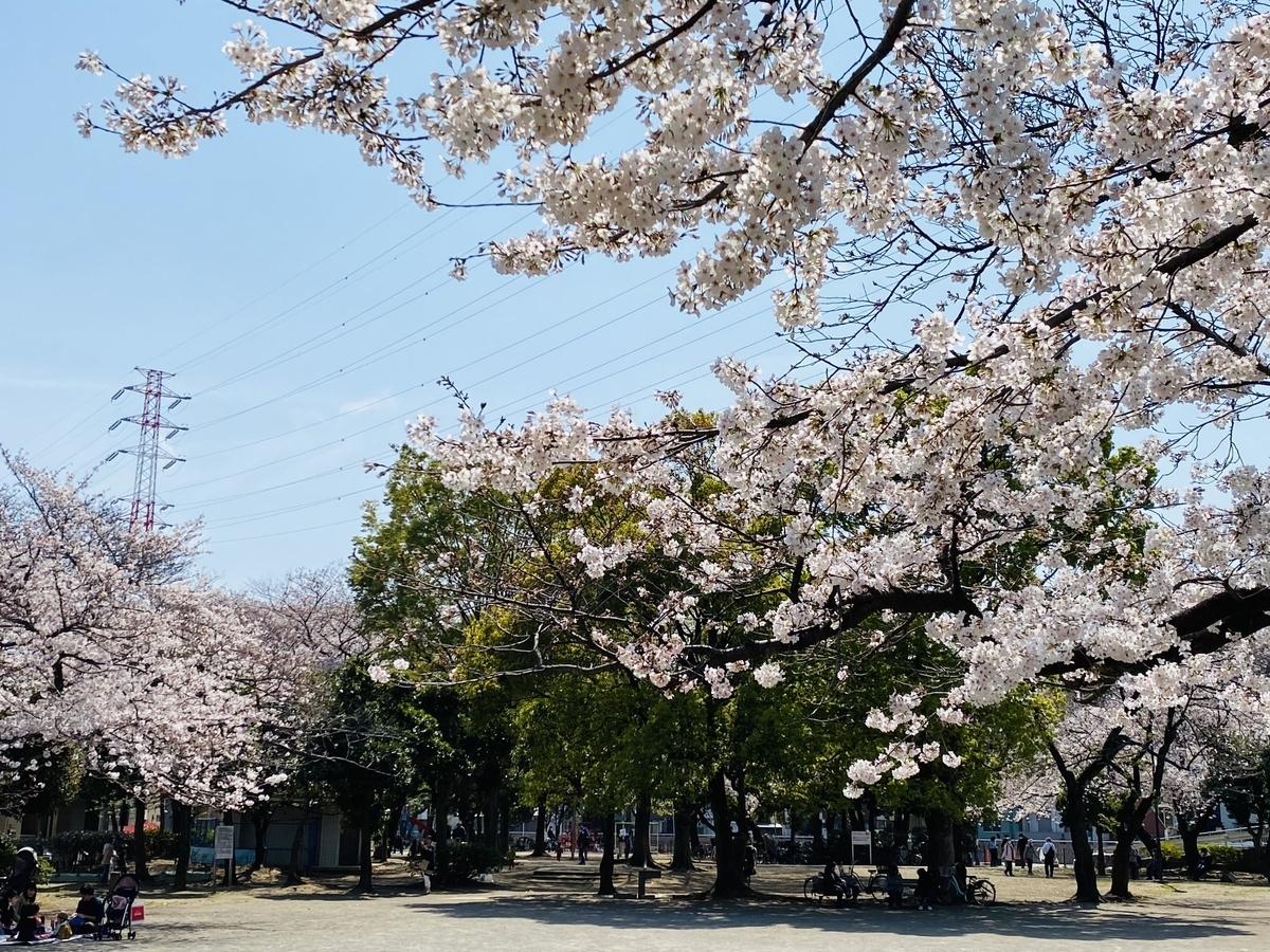 f:id:blogmotosumiyoshi:20210327222604j:plain