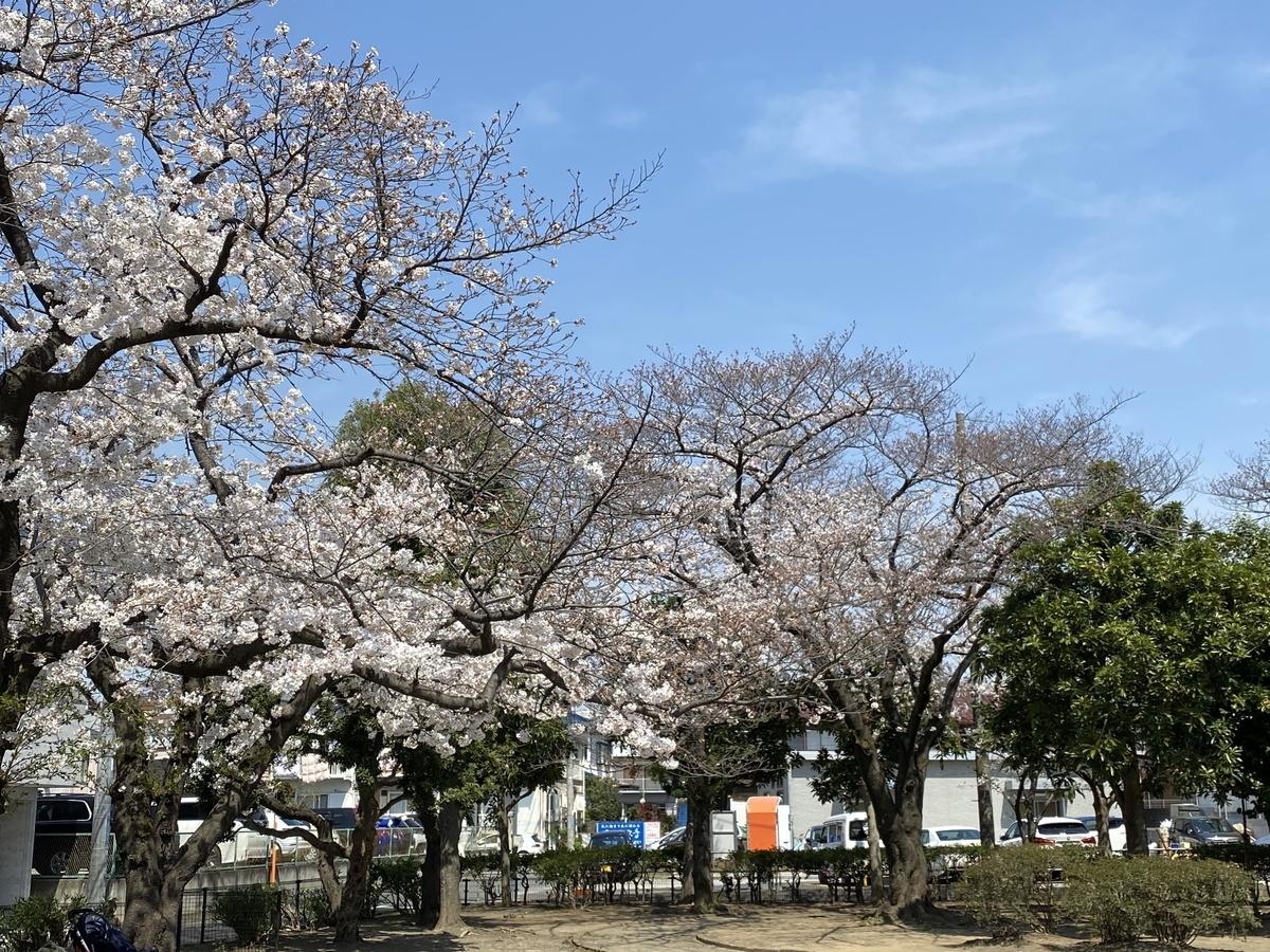 f:id:blogmotosumiyoshi:20210327222625j:plain
