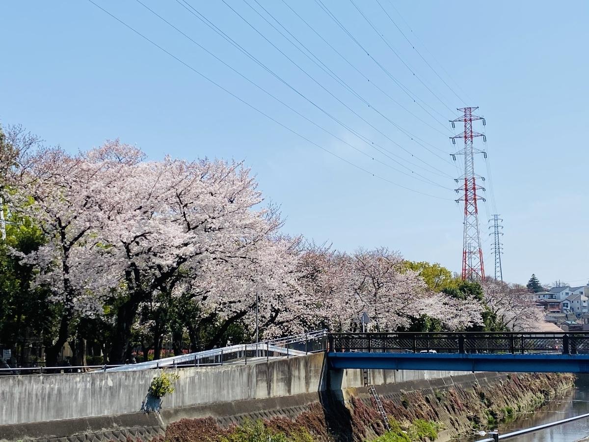 f:id:blogmotosumiyoshi:20210327222632j:plain