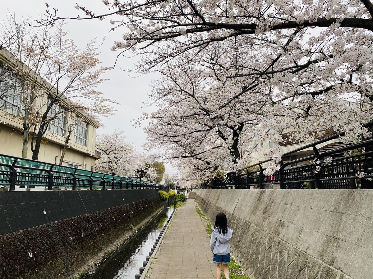 f:id:blogmotosumiyoshi:20210327222703j:plain