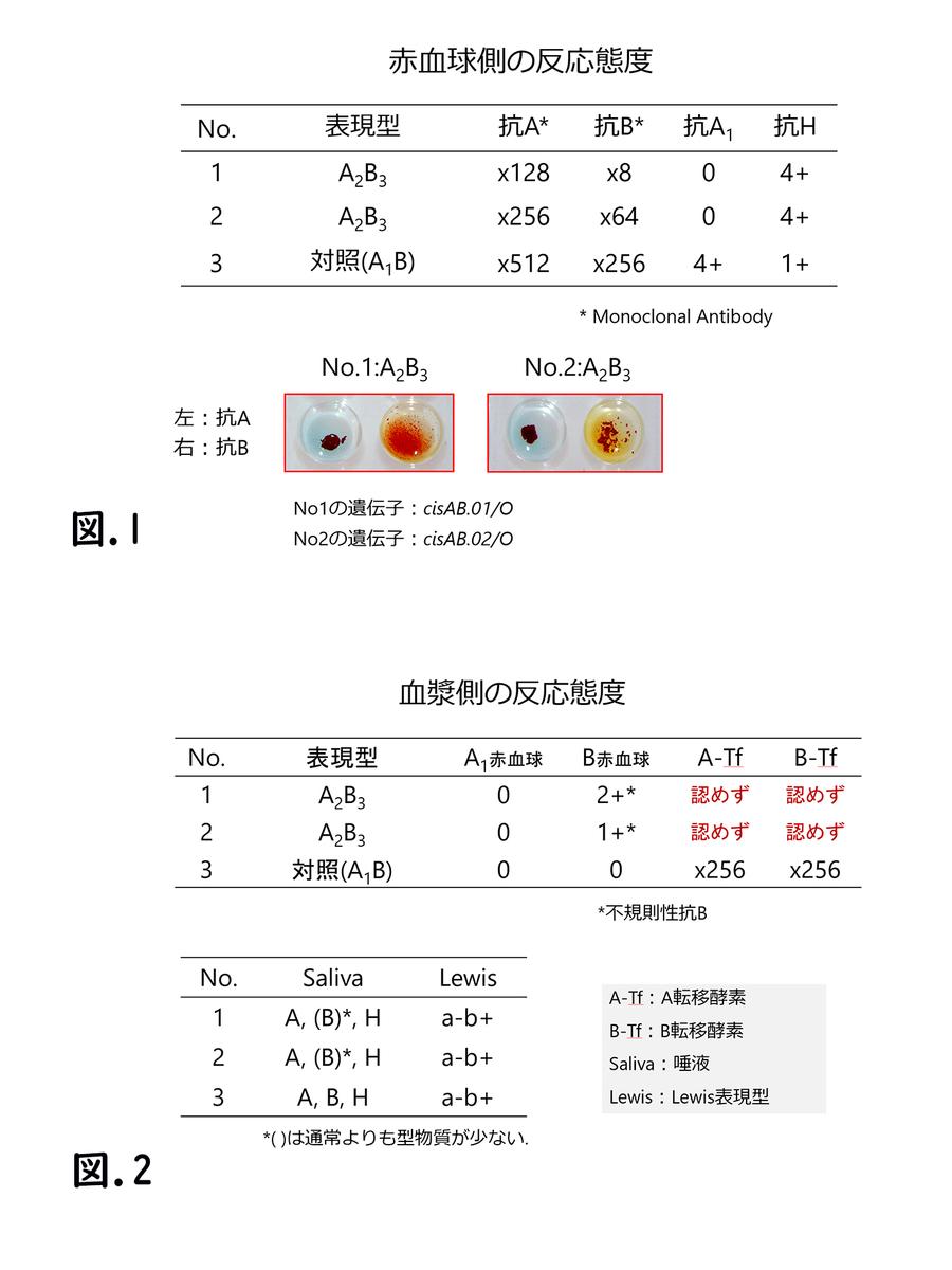 f:id:bloodgroup-tech:20200113203838j:plain