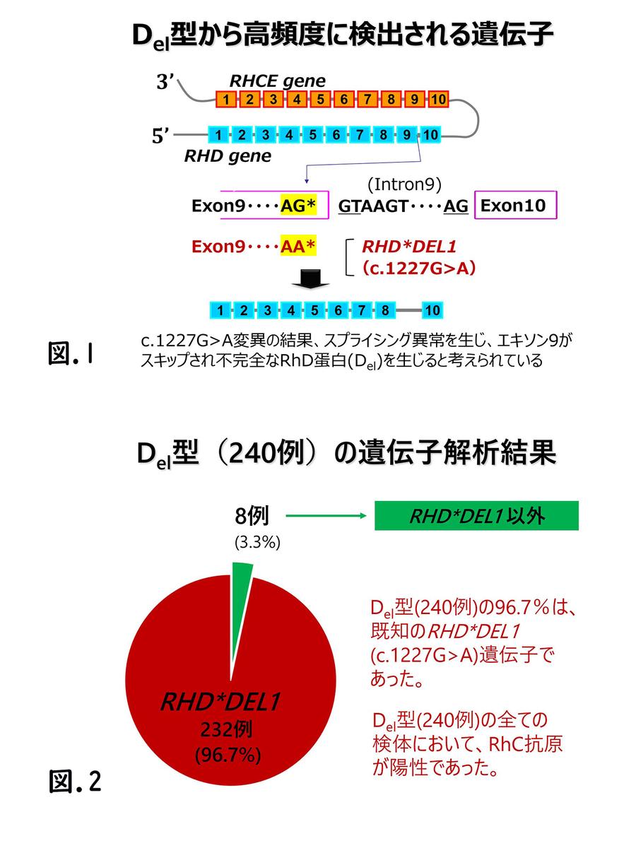 f:id:bloodgroup-tech:20200205155606j:plain