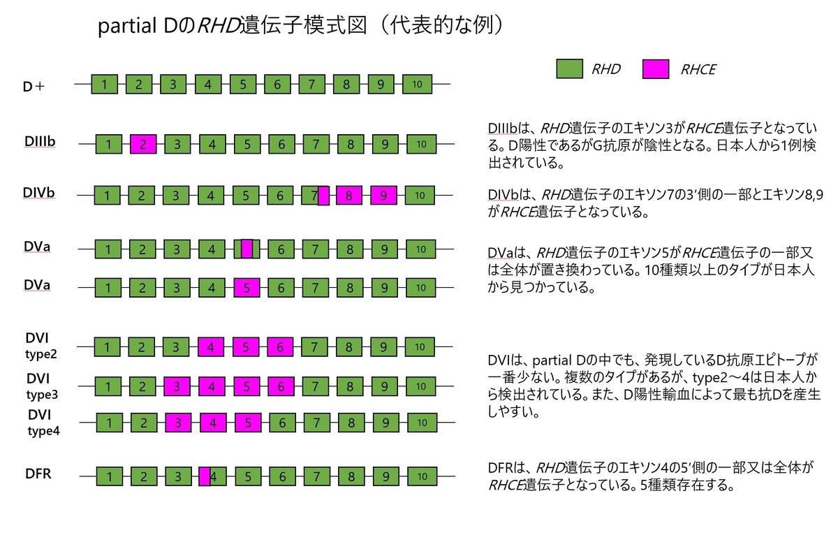 f:id:bloodgroup-tech:20200213203333j:plain