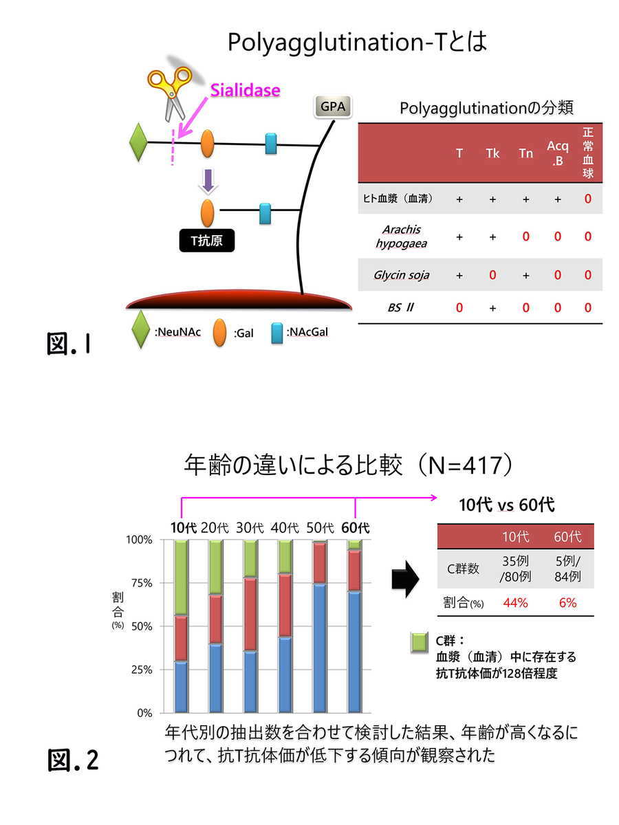 f:id:bloodgroup-tech:20200222103329j:plain