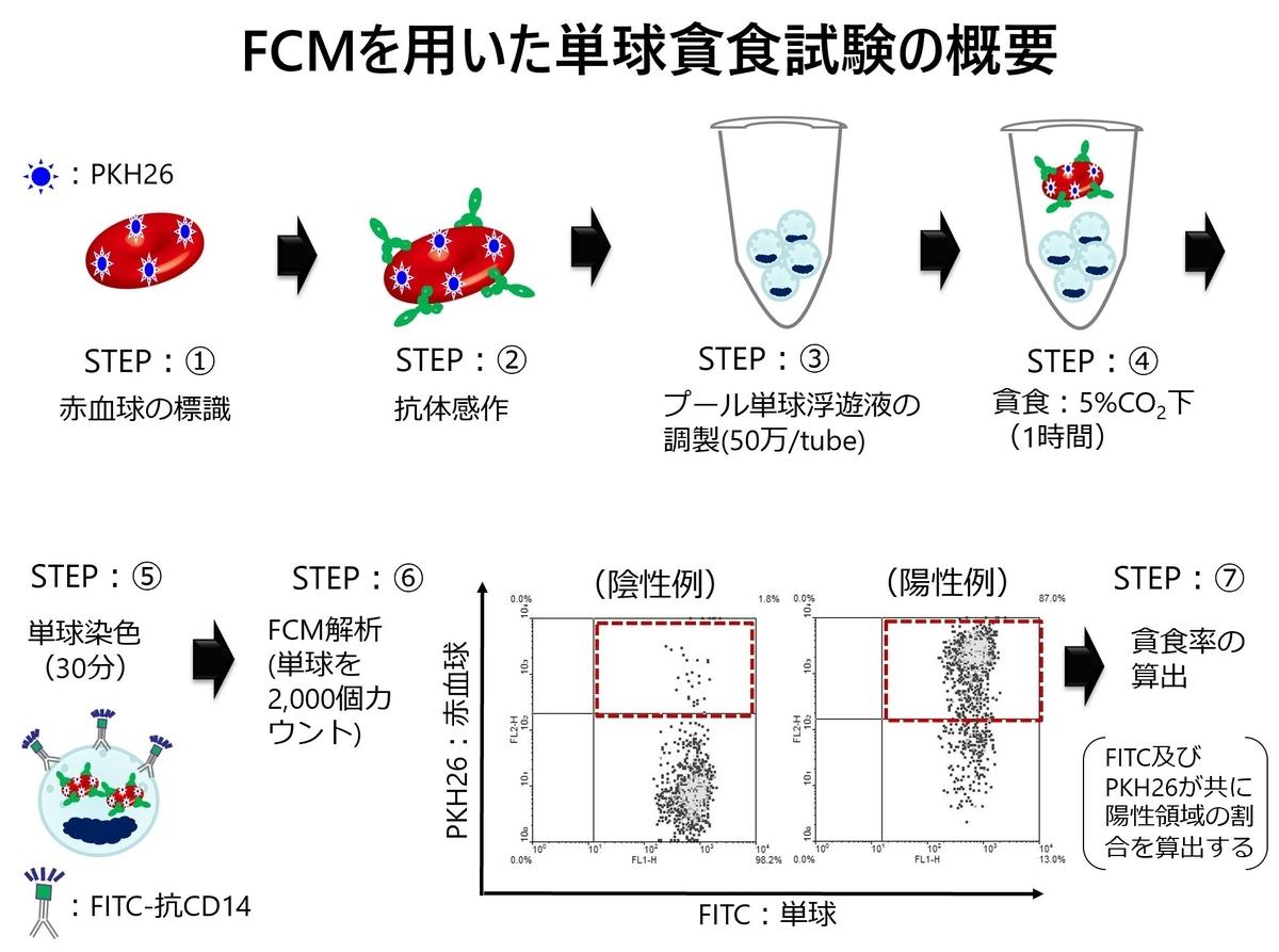 f:id:bloodgroup-tech:20200320192006j:plain